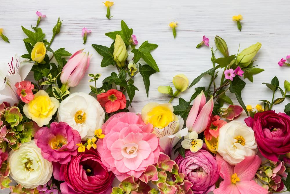 プロポーズは花言葉と一緒に!女性が感動する素敵な演出