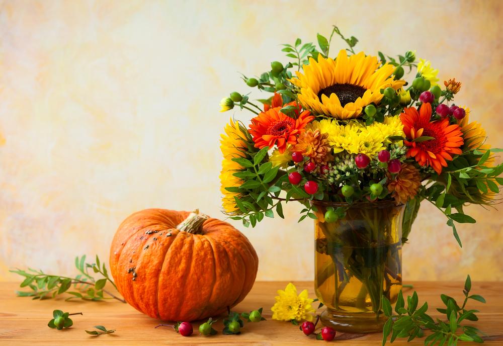 秋は素敵な花言葉がたくさん!夏の疲れを癒してくれるオススメについて