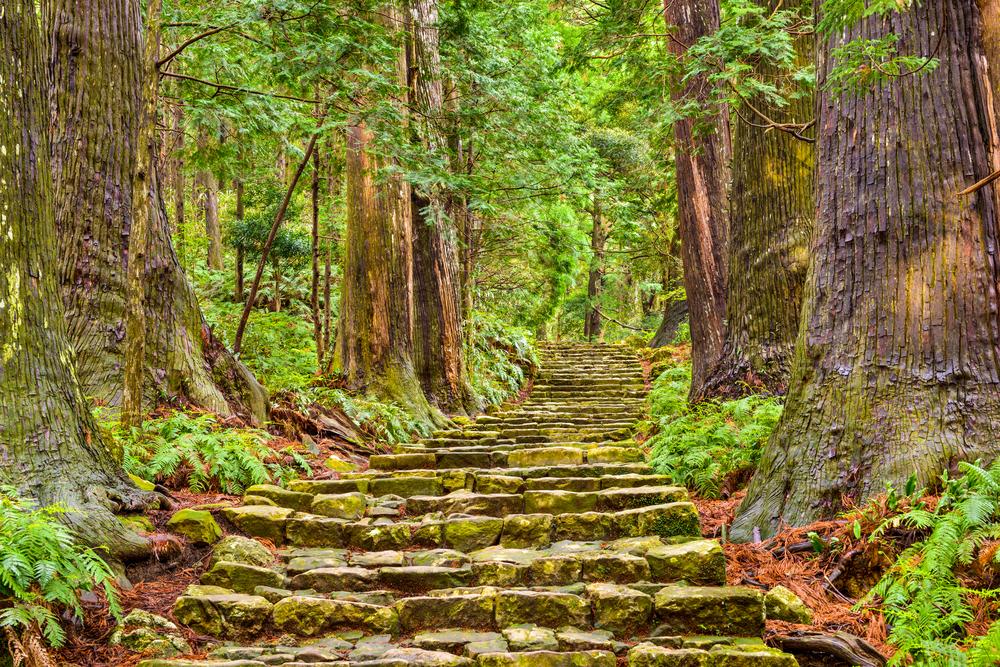 パワースポット一人旅にオススメの熊野古道の魅力やご利益について