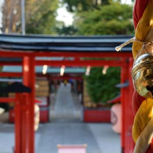 出世運がアップする神社リスト・東京近郊で参拝できる場所