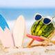 暑い夏の対策は実は風水が大切だった?快適になる運気上昇ポイントについて
